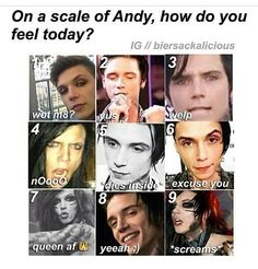 On a scale of Andy?