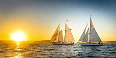 В ближайшие выходные, 7-9 октября, состоится осеннее плавание на парусной яхте в Приморск.🍂🍃⛵️Приглашаем всех желающих приобщиться к яхтингу, с опытом и без! ☑️Старт: пятница, 7.10 около 19.00 (я/к Геркулес, СПб). 📍Возвращение в СПб: воскресенье днем. В программе плавания - обучение, набор цензовых миль (кому нужно), отдых, романтика моря, посещение Приморска и Березовых островов. Плавание организуется на больших круизных парусных яхтах (13,5 м длиной), оборудованных всем необходимым…