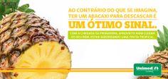 Benefícios do abacaxi!  Confira diferentes dicas para comer a fruta, que traz vários ganhos para a saúde: http://unimed.me/18TiQh7
