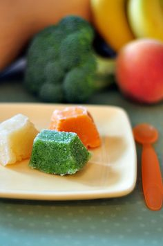 Freezer Baby Food by Pennies on a Platter, great tip for moms...or waaay in the future moms