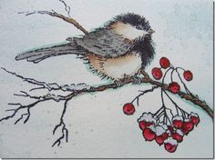 chickadee on branch stampendous - Google Search