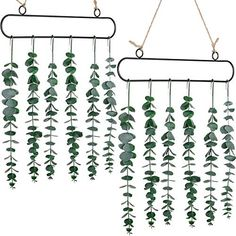 2 Pieces Eucalyptus Wall Hanging Artificial Eucalyptus Fake Plant Wall Decor Christmas Decor Vine Decoration Boho Home for Apartment Bedroom Living Room (Green) - These artificial eucalyptus leaves are made of plastic, and the stems are made of iron wire wrapped in plastic; The 2 black metal frames, which are made of sturdy iron with nice baking varnish; Meanwhile, the hemp rope is made of durable jute. - - #EarthDay #Green #Plants #lowcountry #FoundOnAmazon Living Room Plants, Living Room Green, Boho Living Room, Cozy Living Rooms, Living Room Decor, Plant Wall Decor, Fake Plants Decor, Room Wall Decor, Old Window Decor