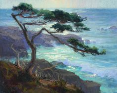 The Test of Time, Pt. Lobos by Kim Lordier Pastel ~ 24 x 30