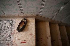 El 2016 en fotos a mala ostia 12 - Maldito Insolente
