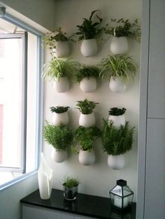 21 Stunning Indoor Wall Herb Garden Ideas - Page 13 of 23 Herb Garden In Kitchen, Garden Pots, Kitchen Herbs, Herbs Garden, Succulents Garden, Kitchen Ideas, Culture D'herbes, Hanging Herbs, Hanging Planters