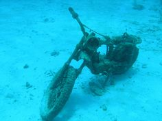 Sitting off the shores of the resort town of Akumal, Mexico, this motorcycle is now covered in living coral and plankton. The 15-year-old formation is now one of the most popular local dives in the area.