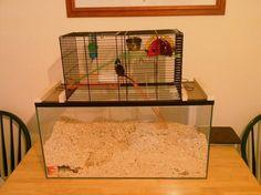 DIY Gerbil Cage | DIY Mouse Cage | DIY Hamster Cage | DIY Rat Cage | Gerbil Enclosure | Mouse Enclosure | Hamster Enclosure