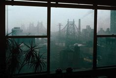 New York City 1983 | Images of New York City In 1983 by Photographer Thomas Hoepker (18 ...