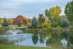 Fall Colors at the Summer Hill Community