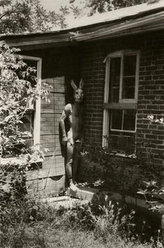 Francesca Woodman, Untitled Boulder Colorado, 1972-1975  Not one for the kids: Woodman's rabbit-headed man stands to attention.    Photograph: The Estate of Francesca Woodman, Courtesy George and Betty Woodman/Victoria Miro