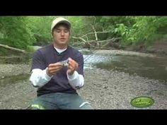 Bass Fishing Tips - Using Swimbaits - GetREELed.com
