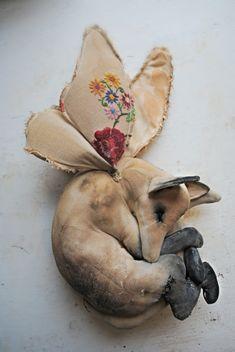 Mister Finch: Winged sleeping fox