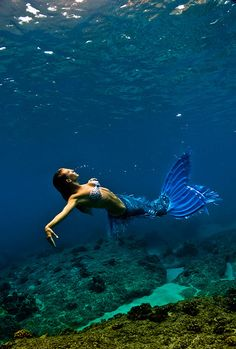 blue lagoon mermaid