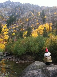 We love this Gnome road trippin' on Highway 2 through Washington.