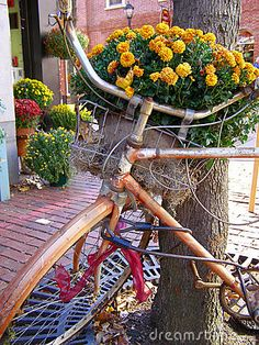 Google Image Result for http://www.dreamstime.com/bicycle-planter-thumb3601744.jpg