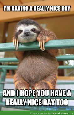 This sloth's positive attitude is too cute to ignore!...... We Wish Everyone A Great Day, From Millionaire Clothing :) #keepsmiling