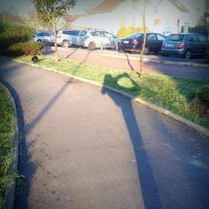 Danse rue balade chien