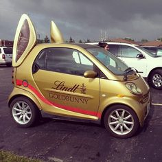 Instagram photo by @Wesley Archambault Piper Wood #smartcar #lindt #chocolate #bunny