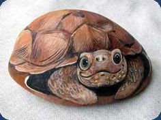Turtle painted on a river stone.He or she is adorable. The lady who painted this did an absolute great job.