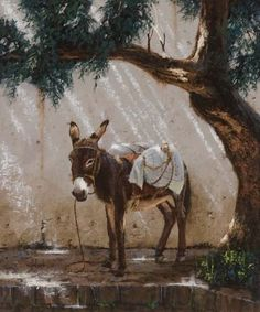 Sombra by George Hallmark Oil ~ 24 x 20 . Zoo Animals, Animals And Pets, Cute Animals, Wildlife Paintings, Animal Paintings, Beautiful Creatures, Animals Beautiful, Cute Donkey, Donkey Donkey