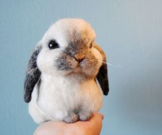 needle felted bunny - lop eared dwarf rabbit made by Willane