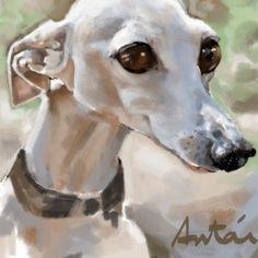 Caricaturas de Mascotas 2. Caricatura Digital. Horses, Pictures, Animals, Caricatures, Pets, Photos, Animales, Animaux, Animal