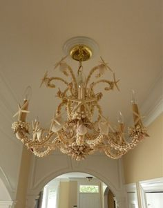 Wonderful Seashell Chandelier