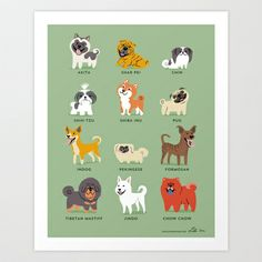 The INDog included in Lili Chin's/Doggie Drawings poster on Asian Dogs :) Lovely depiction! Asian Dogs Art Print by Lili Chin