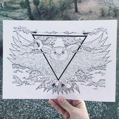 OWL ✖️ ILLUSTRATION