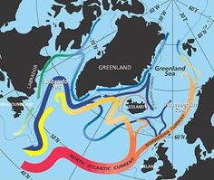 One World Ocean - Activity - Learn about ocean currents and the difference between salt and fresh water.  www.TeachEngineering.org