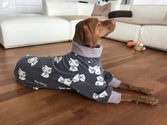 DOWNLOAD SEWING PATTERN / Vizsla  Pajamas - sizes XSmall and Small / Paper sizes: A4 - Letter - Poster