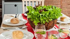 I'm not sure that I would used the basket as a dining table centrepiece, but lettuce leaves growing in a hanging basket is a great idea. Most of the fancy varieties will grow through the cooler months. Indoor Garden, Indoor Plants, Outdoor Gardens, Home And Garden, Container Gardening, Gardening Tips, Edible Garden, Better Homes And Gardens, Hanging Baskets
