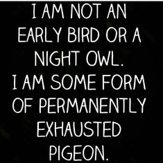 I am not an early bird or a night owl. I am some form of permanently exhausted pigeon. Especially on Monday