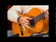 Cómo Tocar Guitarra Acustica Curso Lección 1 (HD) Tutorial - Christianvib - YouTube
