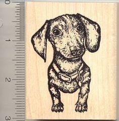 5x8 inch LEFT FACING White Vinyl Abstract Fancy DACHSHUND Sticker weener dog