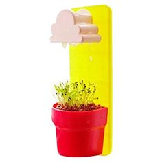 Flower Pot - TOOGOO(R)Good Quality Hanging Pot Creative White Clouds Rainy Pot Wall-hung Flower Pot Yard Plants Home New Decor Yellow