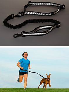 The Stunt Dog leash lets you go running with your dog more easily. | 28 Clever Products You Need To Get In Shape For 2014