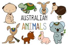 Australian Animals Vector Clipart by SunsetWatercolors on @creativemarket