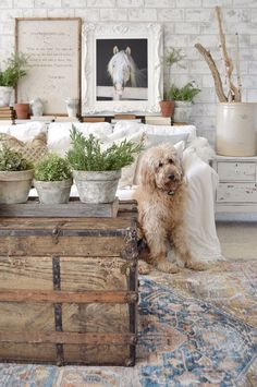 DIY Painted Pots is part of Diy painting - Thank you for all of your sweet comments about my painted pots! I'm so excited Farmhouse Decor, French Country Decorating, Decor, Diy Faux Brick Wall, Cheap Home Decor, Country Cottage Decor, Diy Painting, Vintage Porch, Painted Pots