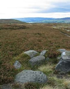 Prehistoric rock carvings, Ilkley Moor, Yorkshire