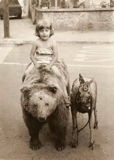 riding the bear - looks really creepy, this stuffed, taxidermic bear. Vintage Pictures, Old Pictures, Vintage Images, Old Photos, Vintage Children Photos, Vintage Bizarre, Creepy Vintage, Circus Vintage, Art Zen