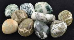 """1 lb Tree Agate tumbled stones Tree Agate is a member of the Quartz family of stones and as such is an excellent conductor of energy. Tree Agate is an excellent stone to use in meditations, rituals and as a pocket stone where releasing pent up emotions, increasing optimism or boosting your personal sense of potential are the desired goal. Sold by aproximate weight - not stone size or count. 66 - 74 stones. 1/2"""" x 5/8"""" - 7/8"""" x 1 1/8""""  https://shadowsofthemoon.net   #witchcraft #Wicca #Book…"""