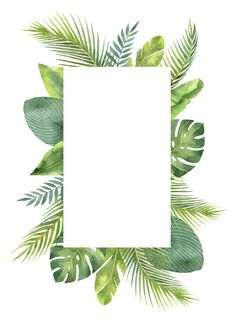 Watercolor frame tropical leaves and branches isolated on white background. Illustration for design wedding invitations, greeting cards, postcards with space for your text. Framed Wallpaper, Flower Background Wallpaper, Flower Backgrounds, Wallpaper Backgrounds, Iphone Wallpaper, Freetime Activities, Space Activities, Fond Design, Instagram Frame