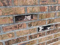 Chalk Art on Streets of Ann Arbor – Michigan
