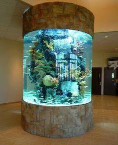 Acrylic for aquarium: prices! : Acrylic for Acrylic for aquarium: prices! acrylic fish tanks,acrylic for aquarium,aquarium top designs