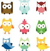 Cute Owl Bird wildlife Lovely animal