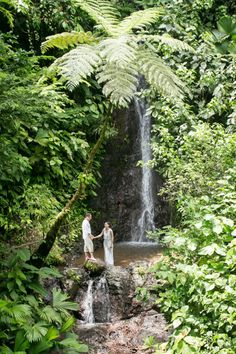 Rainforest Waterfall Wedding photography in Costa Rica by John Williamson- taken at Rainmaker Park