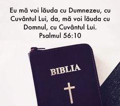 Money Clip, Wallet, Bible, Money Clips, Purses, Diy Wallet, Purse