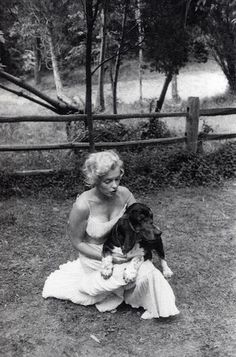 Marilyn and her dog, Hugo. Two of the most beautiful creations, basset hounds and Marilyn Monroe Dog Photoshoot, Marilyn Monroe Fotos, Pin Up, Norma Jeane, Classic Beauty, Steve Mcqueen, Old Hollywood, Hollywood Actresses, My Idol