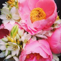 Close up shot of peonies and white chinch  Flowers by us! stemsbrooklyn.com
